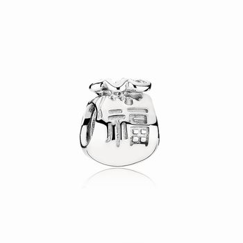 Pandora Moneybags Charm 790990